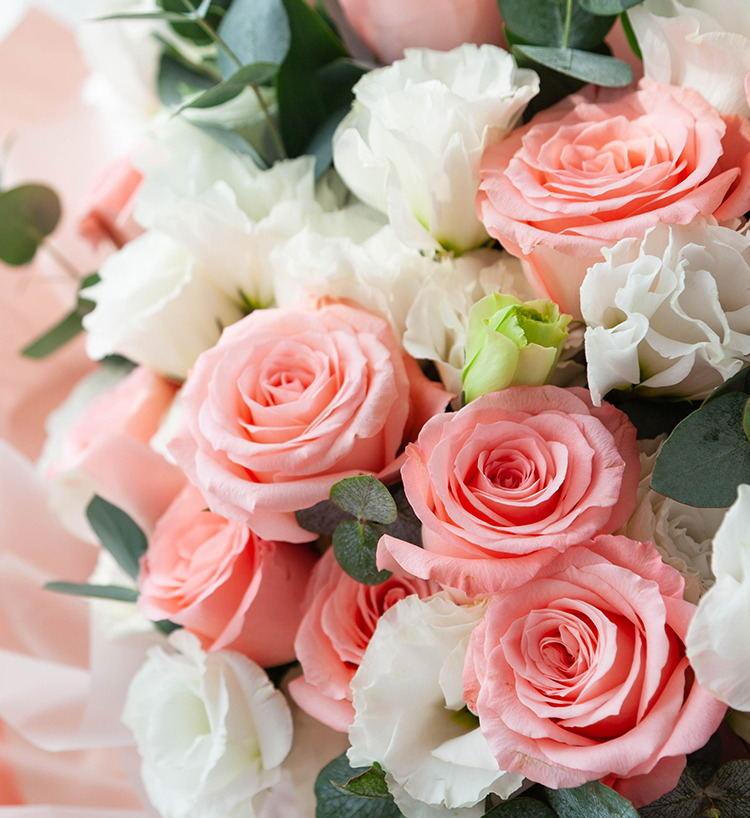 公主的假日--戴安娜玫瑰11枝、白色洋桔梗5枝、大叶尤加利10枝