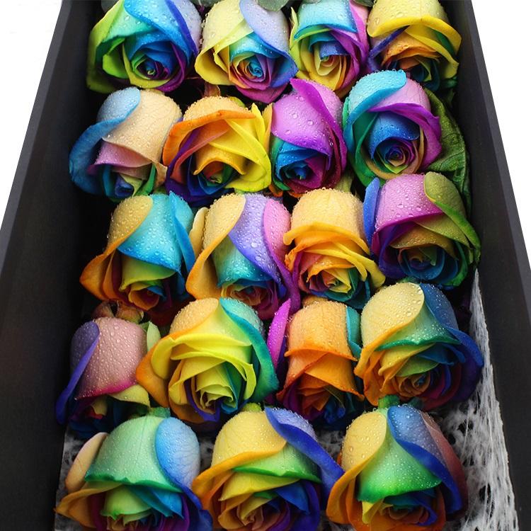 永远的浪漫-19朵荷兰进口七彩玫瑰花礼盒盛放