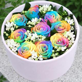 爱的表白-9朵彩虹玫瑰花+配花+精美绒布礼盒