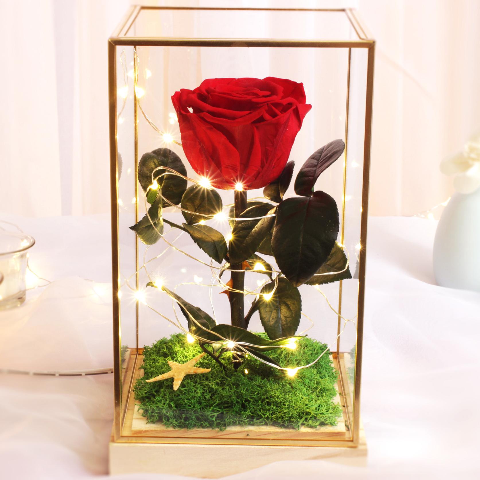 进口永生花玻璃罩摆永生玫瑰花保鲜花