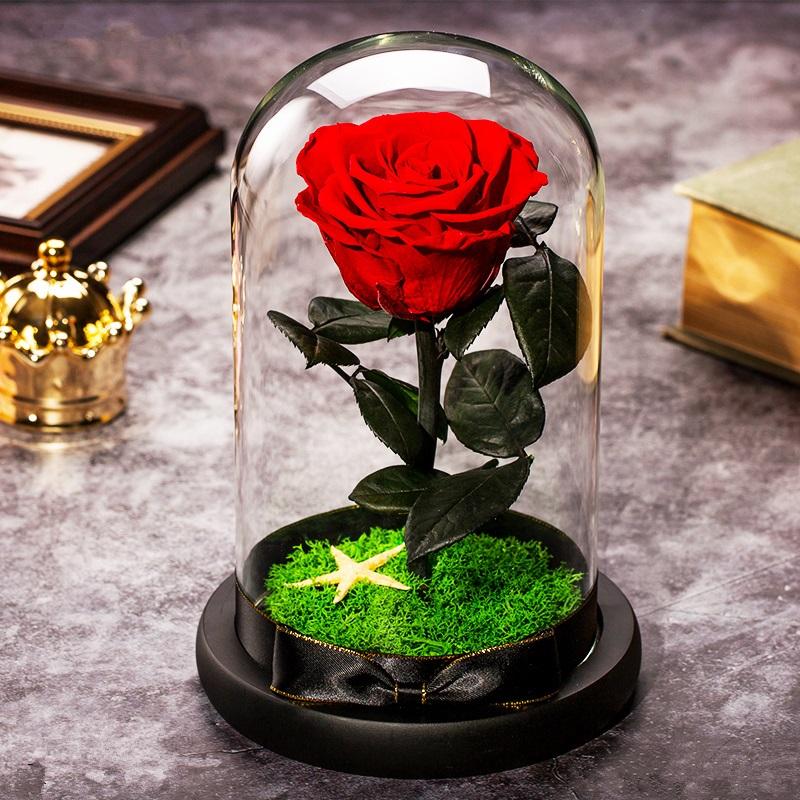 进口永生花礼盒小王子玫瑰真花带灯玻璃罩摆件