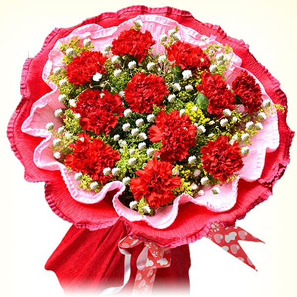 妈妈的爱馨——11朵红色康乃馨如图包装